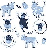 set of cows