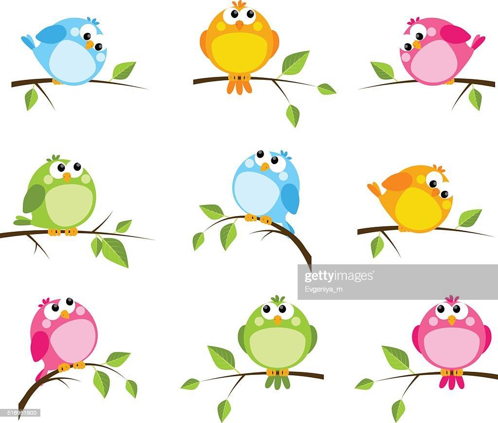 Set of cute color birds