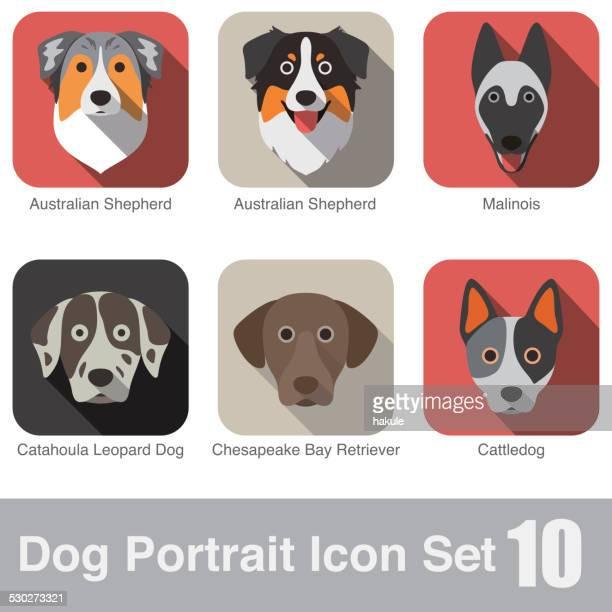 stockillustraties, clipart, cartoons en iconen met set of cute dog head icons, vector illustration - dierenkop