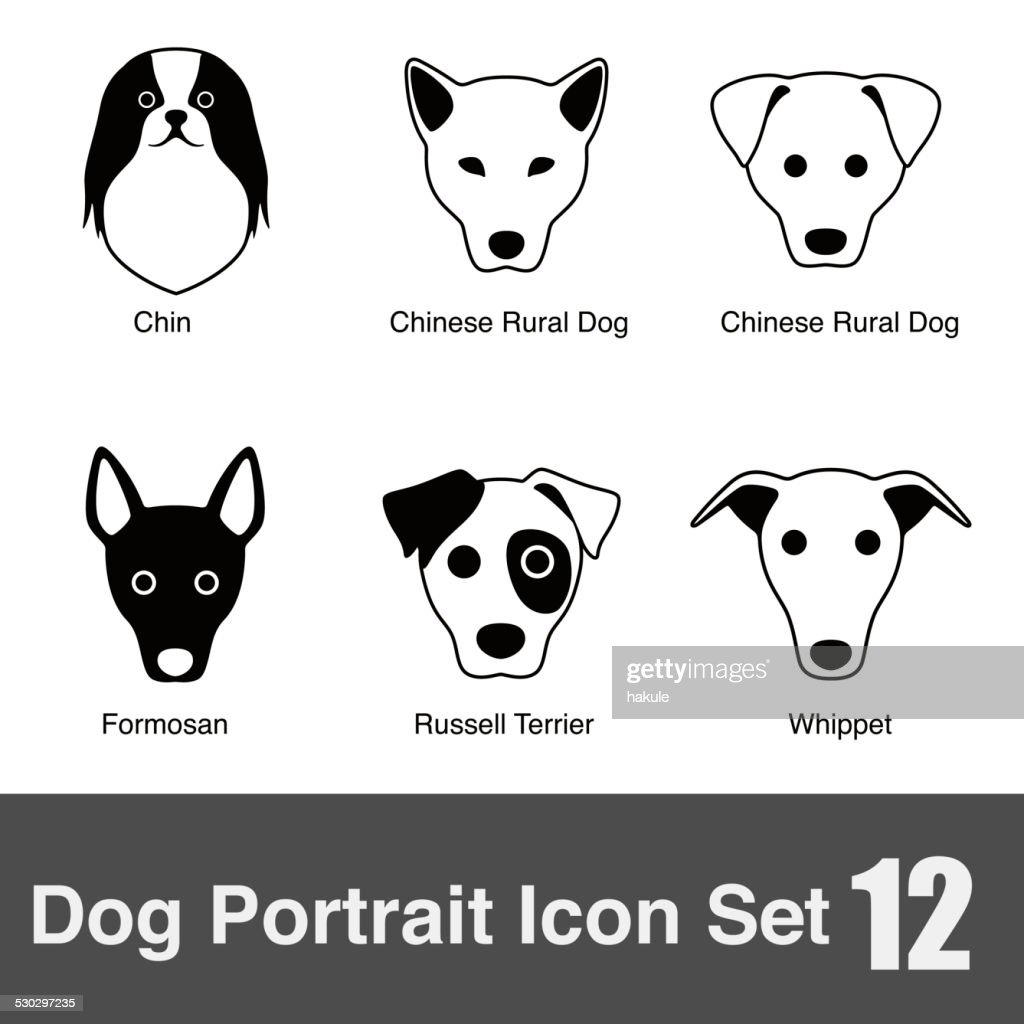 set of cute dog head icons, vector illustration