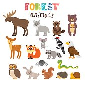 Set of cute forest animals in vector. Woodland. Cartoon style