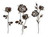 Set of decorative rose with leaves. Flower silhoutte.