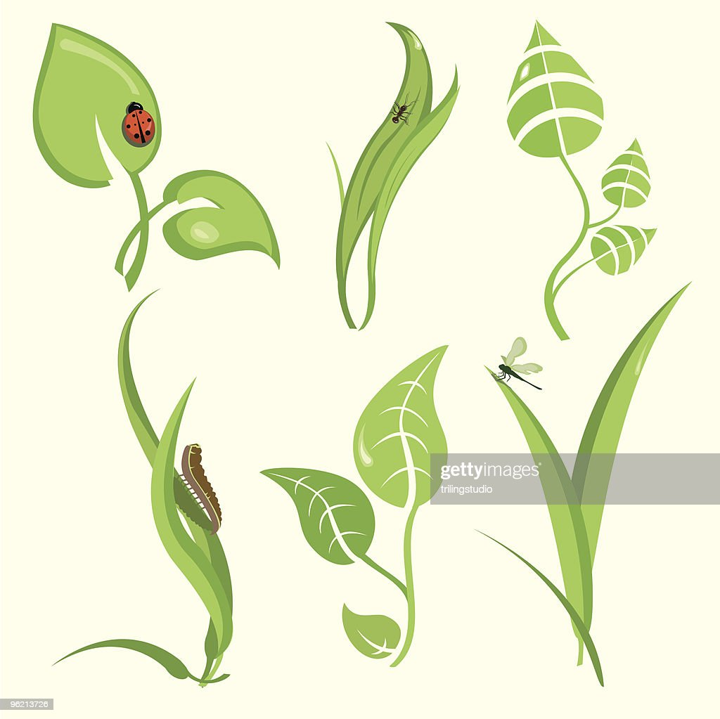 set of design plant leaves with funny insects