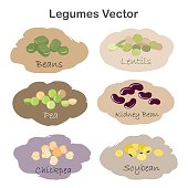 Set of different cartoon legumes labels isolated on white background. Kidney, soy, green beans, peas, chickpeas, lentils.