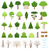 Set of different forest, tropical and dry trees, bushes, stumps, logs and clouds. Vector illustration
