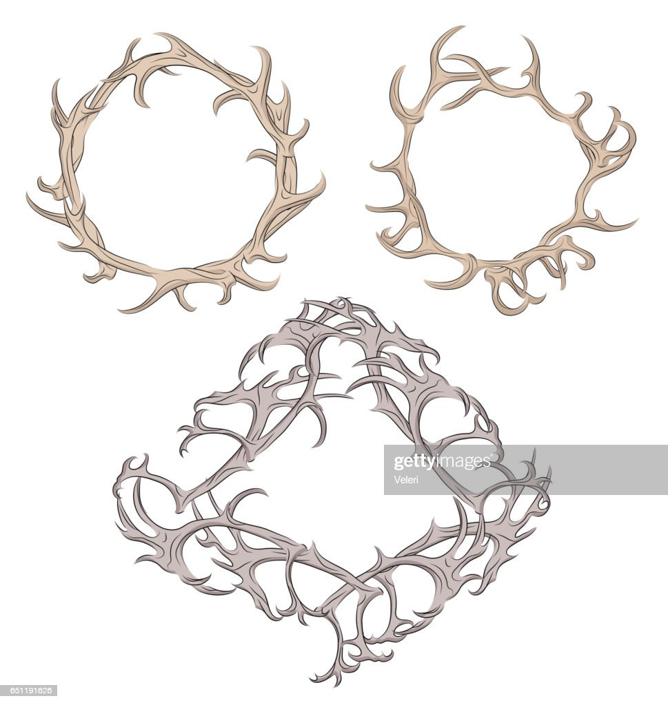 Set of different frame of deer antlers.