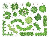 Set of different green trees, shrubs, hedges. Top view for landscape design projects. Vector illustration, isolated on white.