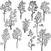 set of different spring trees