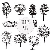Set of different types hand drawn trees