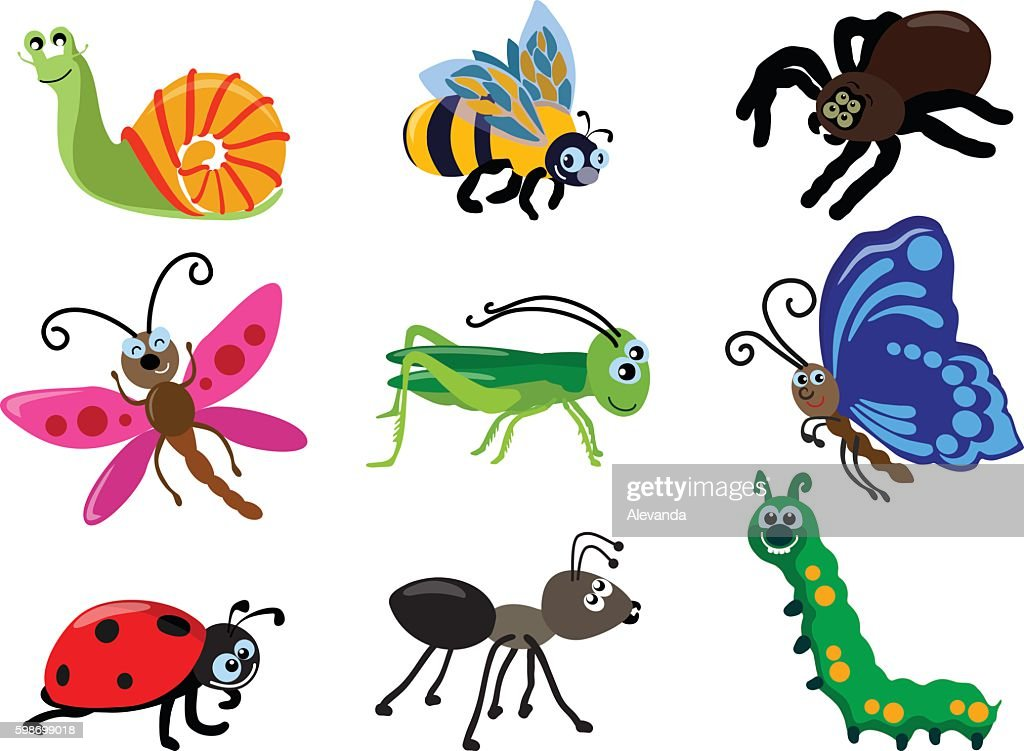 Set of different types of insects. Vector illustration.