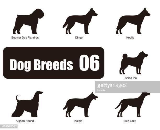 犬の攻撃独立したサイド、黒と白のベクトル - オーストラリアンケルピー点のイラスト素材/クリップアート素材/マンガ素材/アイコン素材