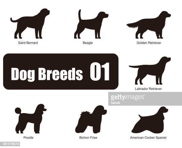 set of dog breeds, black and white, side view, vector - golden retriever stock illustrations, clip art, cartoons, & icons