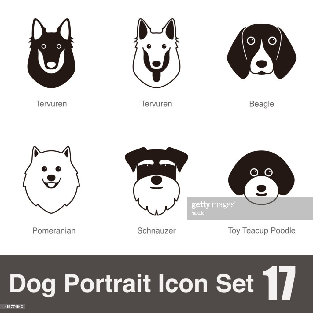 set of dog breeds, black and white, side view, vector