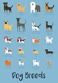 Set Of Dog Breeds Vector Illustration
