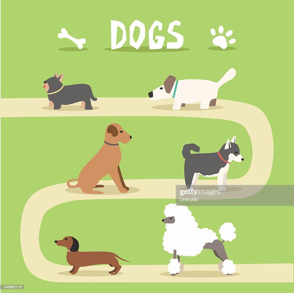 Set of dogs. Cartoon vector illustration. Park