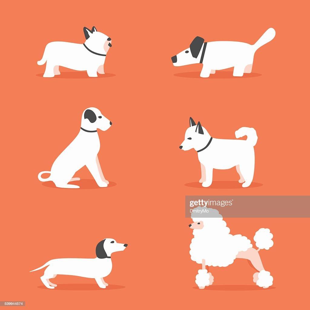 Set of dogs. Cartoon vector illustration. Vet clinic