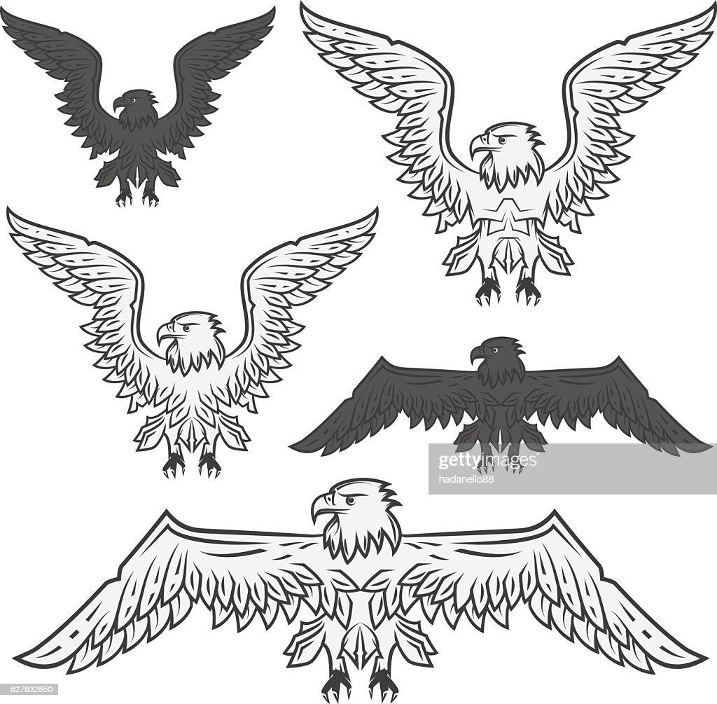 Set of eagle for emblem and design tattoo ,labels.