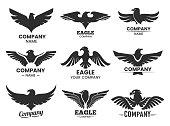 Set of Eagle or falcon black silhouettes