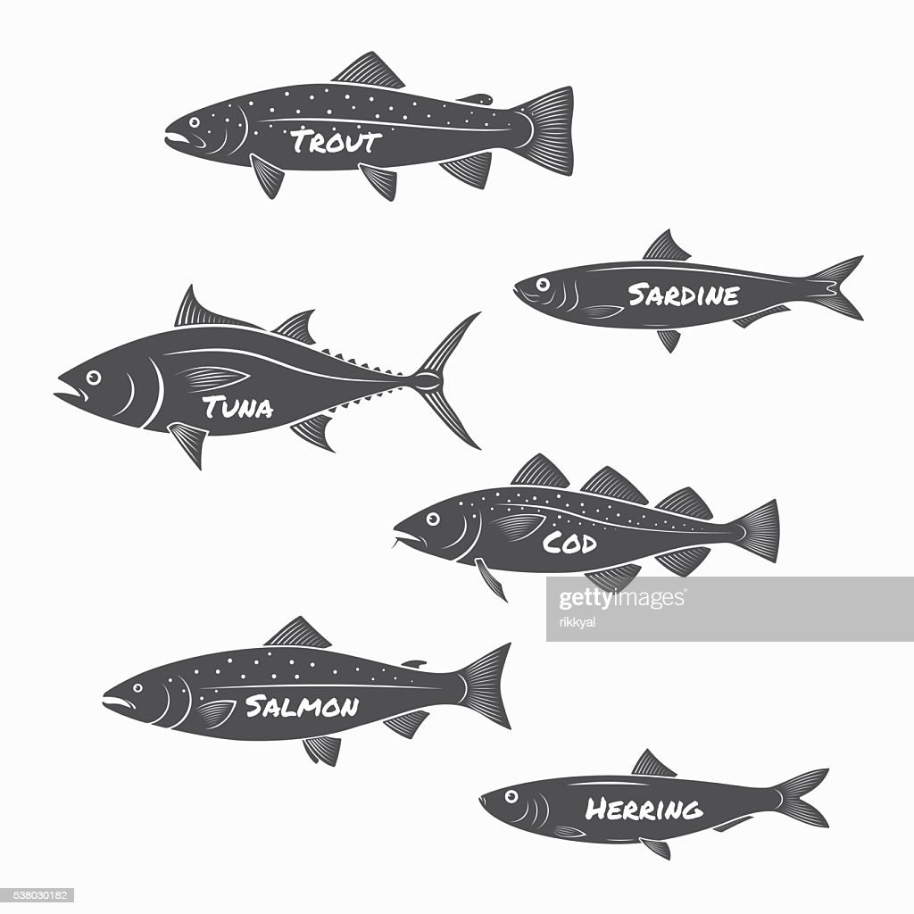 Set of fish silhouettes on white background.