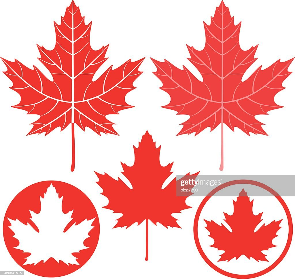 Set of five red and white drawings of maples leaves