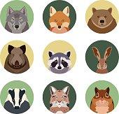 Set of flat animal icons