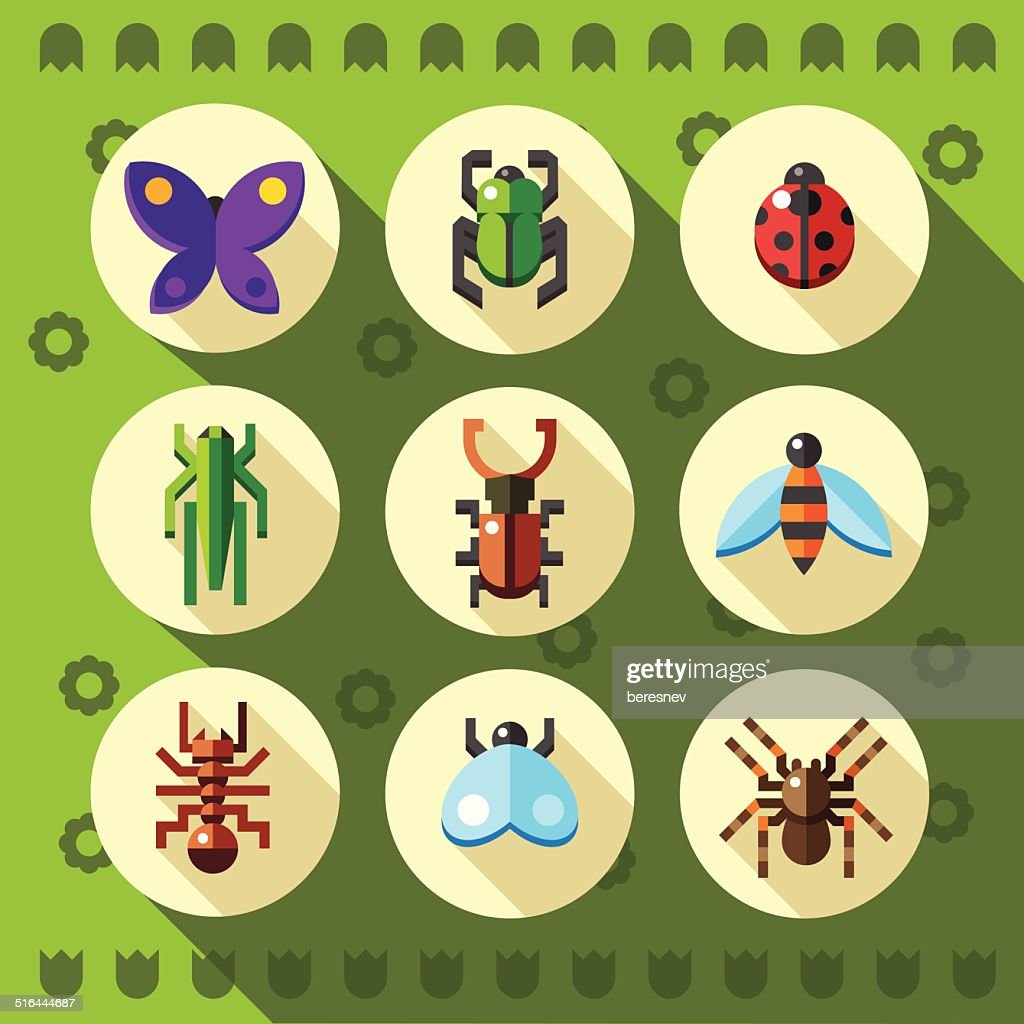 Set of flat insect bug icons.