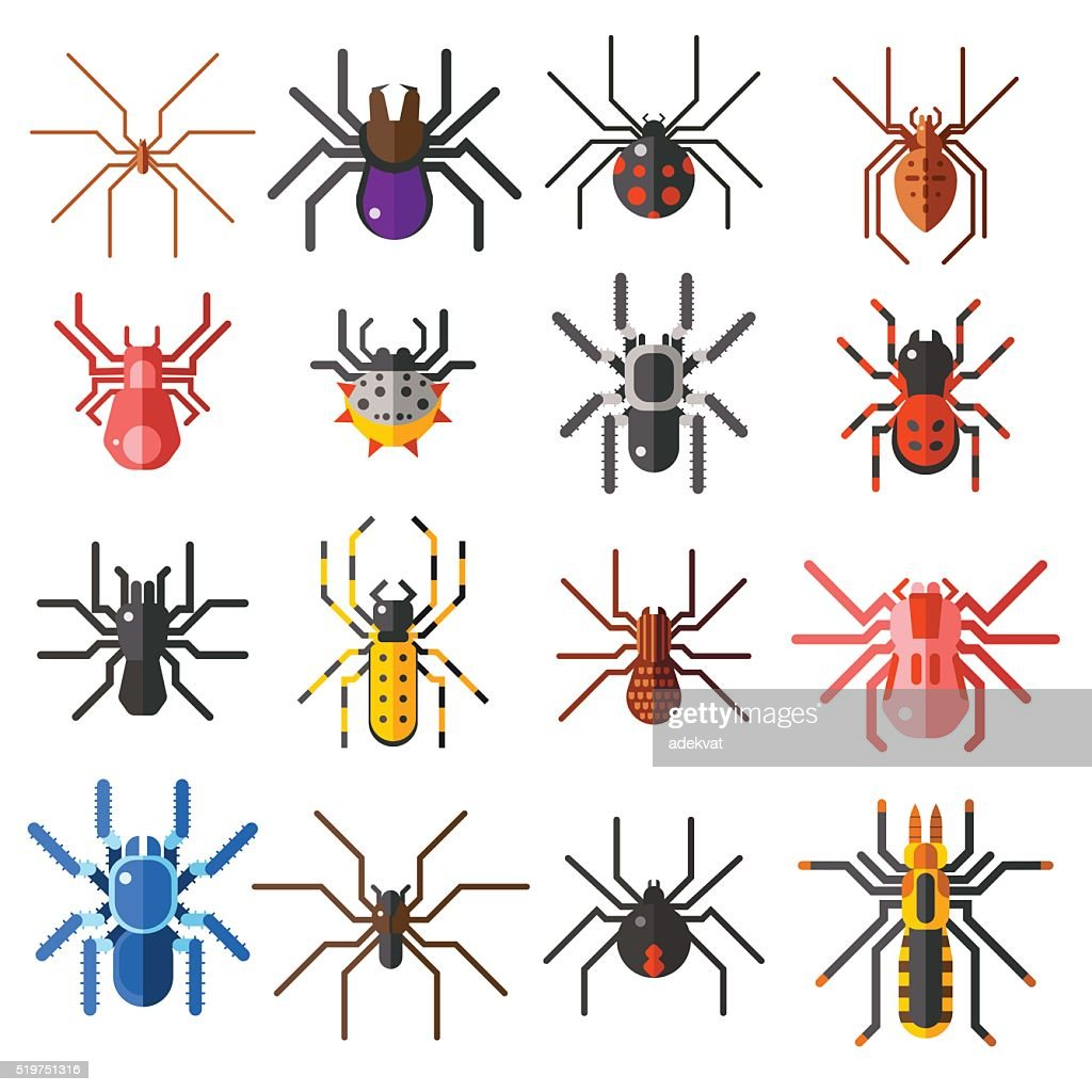 Set of flat spiders cartoon colored icons vector illustration isolated