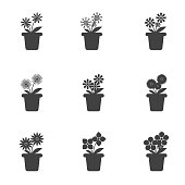 Set of Flowers in Pots Icon