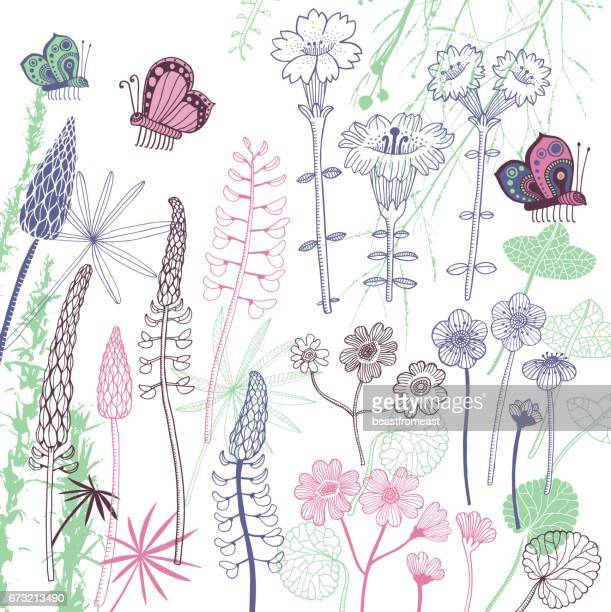 set of flowers - ranunculus stock illustrations, clip art, cartoons, & icons
