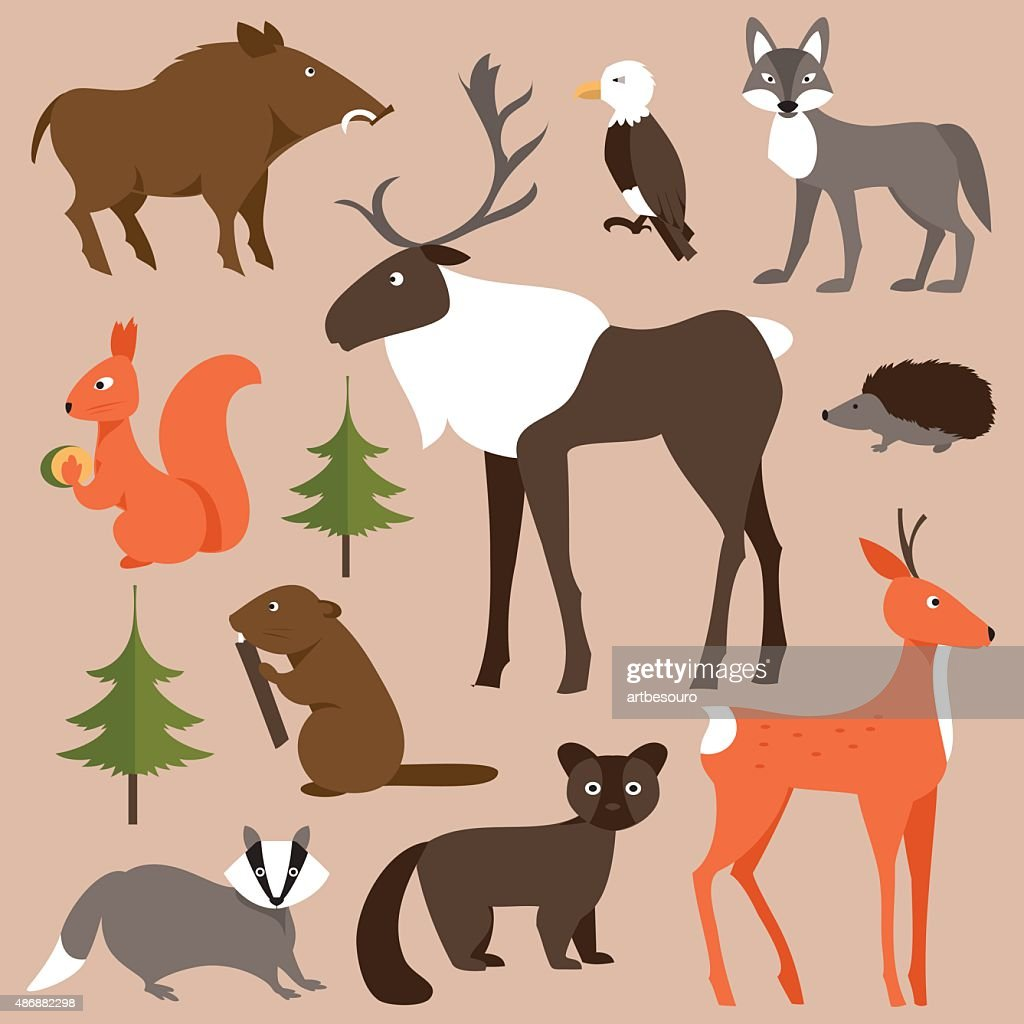 Set of forest animals. Vector Illustration