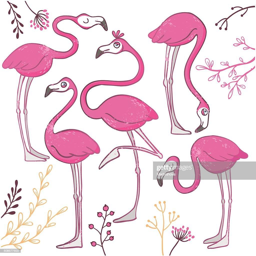 Ein Satz von lustig handgezeichnet Flamingos. : Vektorgrafik