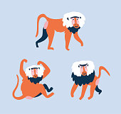 Set of funny monkeys in different poses on the blue background. Vector hand drawn isolated design element - vector cute baboons.