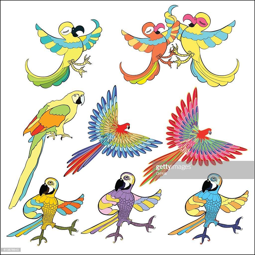 set of golden Caribbean parrot dancing. vector illustration