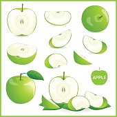 Set of green apple in pieces, whole, slice and half