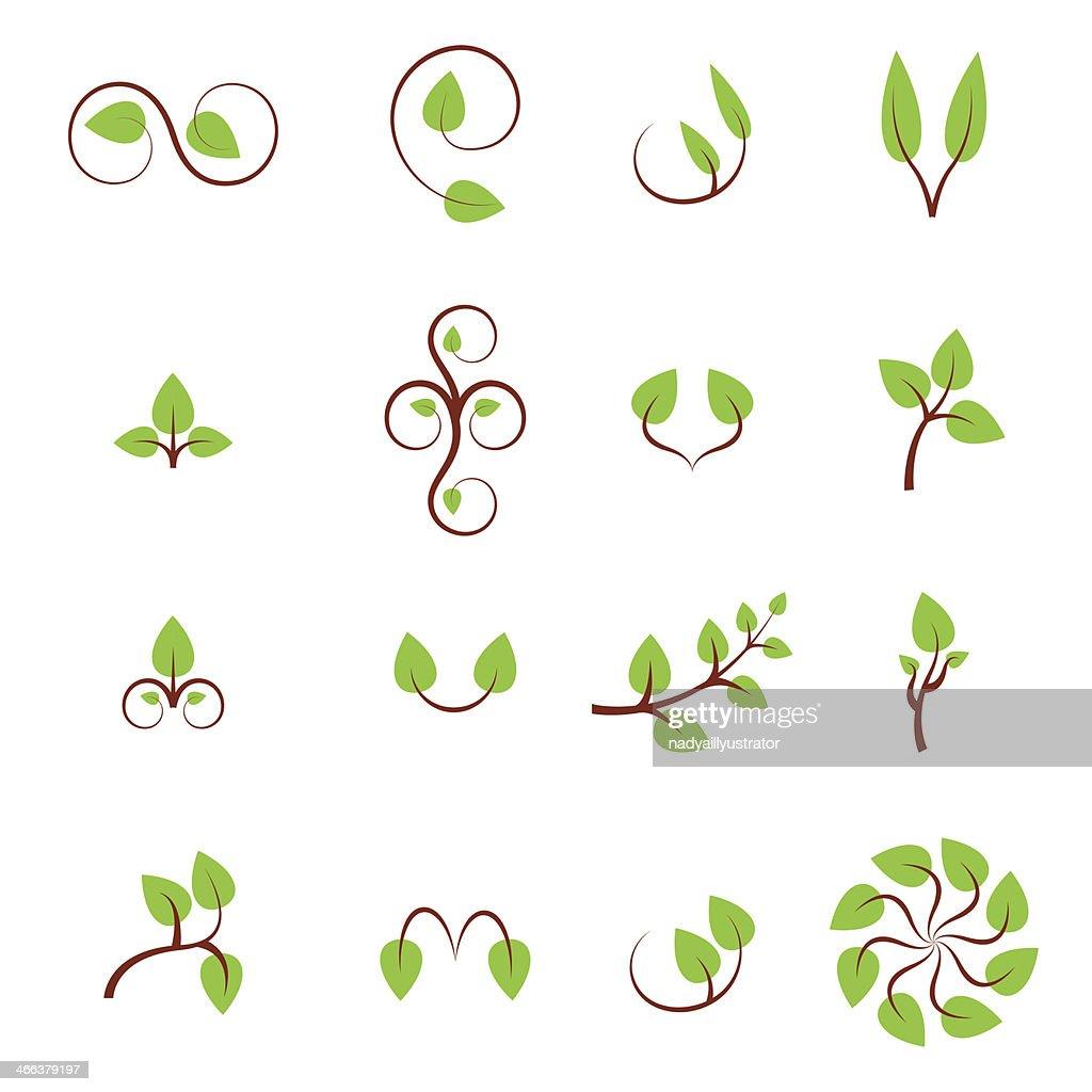 Set of green leaves design elements