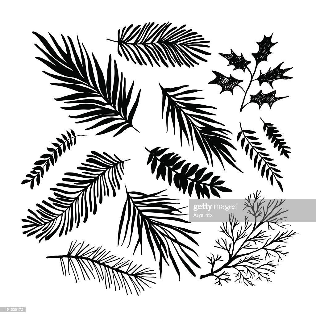 Set of hand drawn branches.