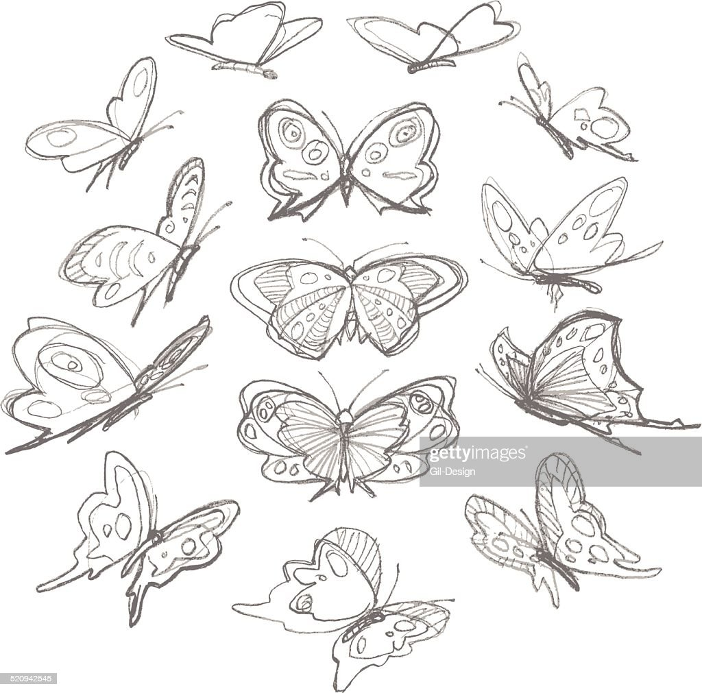 Set of hand drawn butterflies. Pencil sketch.