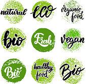 Set of hand drawn emblems. Eco food, organic food, bio, vegan, natural. Design elements for  label, badge, sign. Vector illustration