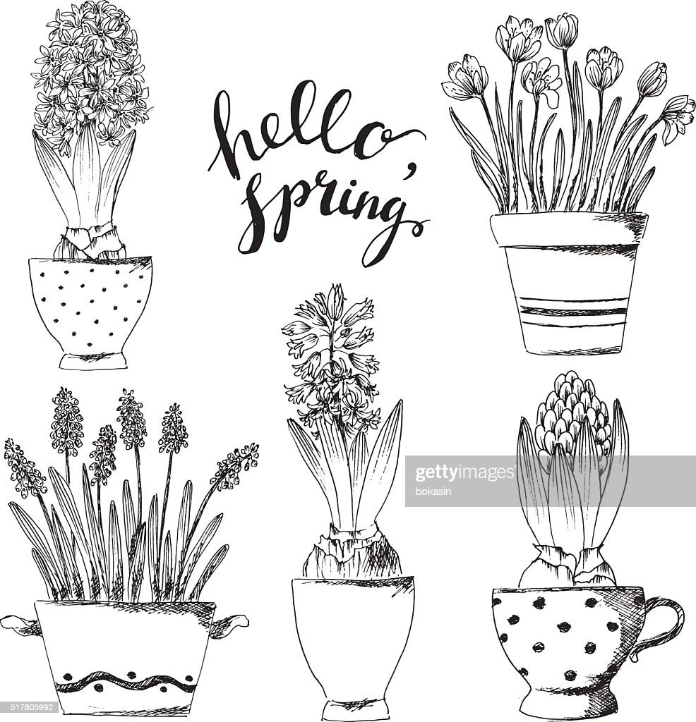 Set of hand drawn lineart pot flowers with hyacinth