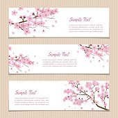 Set of Horizontal Sakura Banners with Place for Text.