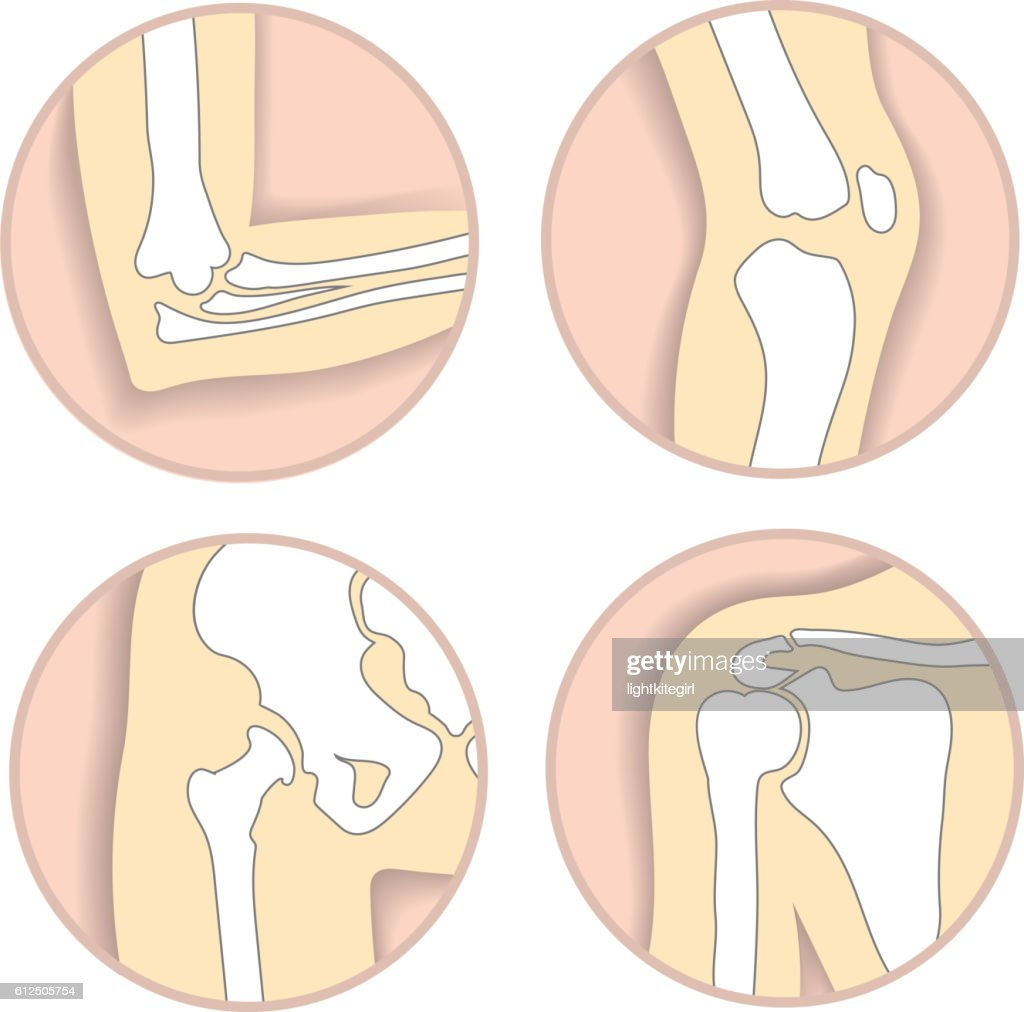Set of human joints, elbow, knee, hip and shoulder joint