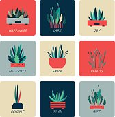 set of icons of indoor flowers