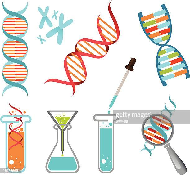 A set of illustrated Science and DNA Icons