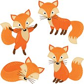 set of isolated cute foxes part 2