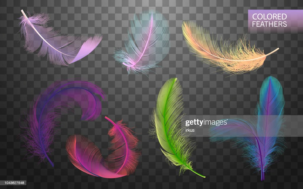 Set of isolated falling colored fluffy twirled feathers on transparent background in realistic style. Light cute feathers design. Elements for design. Vector Illustration