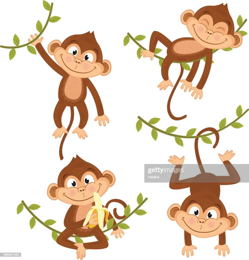 set of isolated monkey hanging on vine