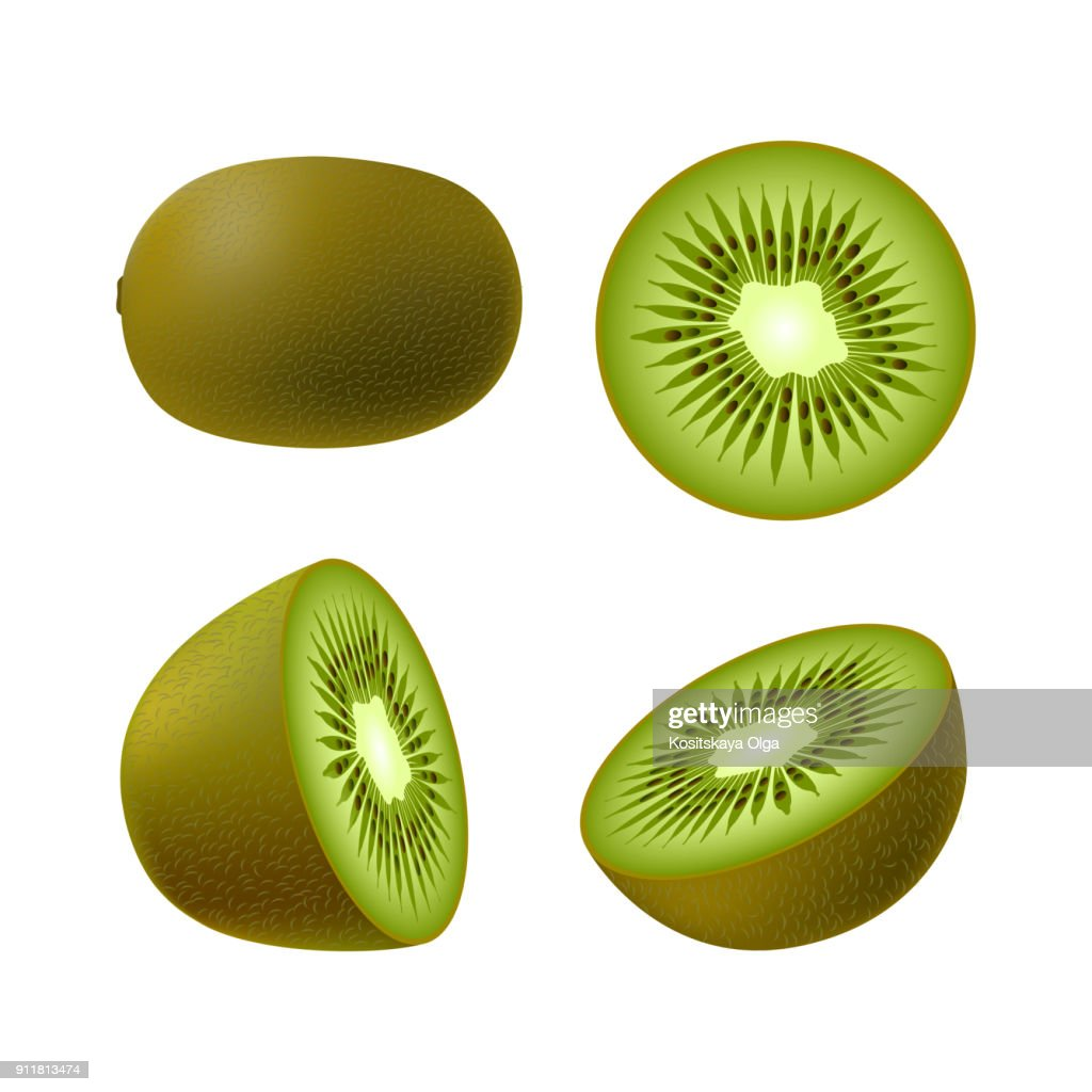 Set of isolated realistic colored whole juicy kiwi, half green kiwi and kiwi circle on white background. Realistic fruit collection.