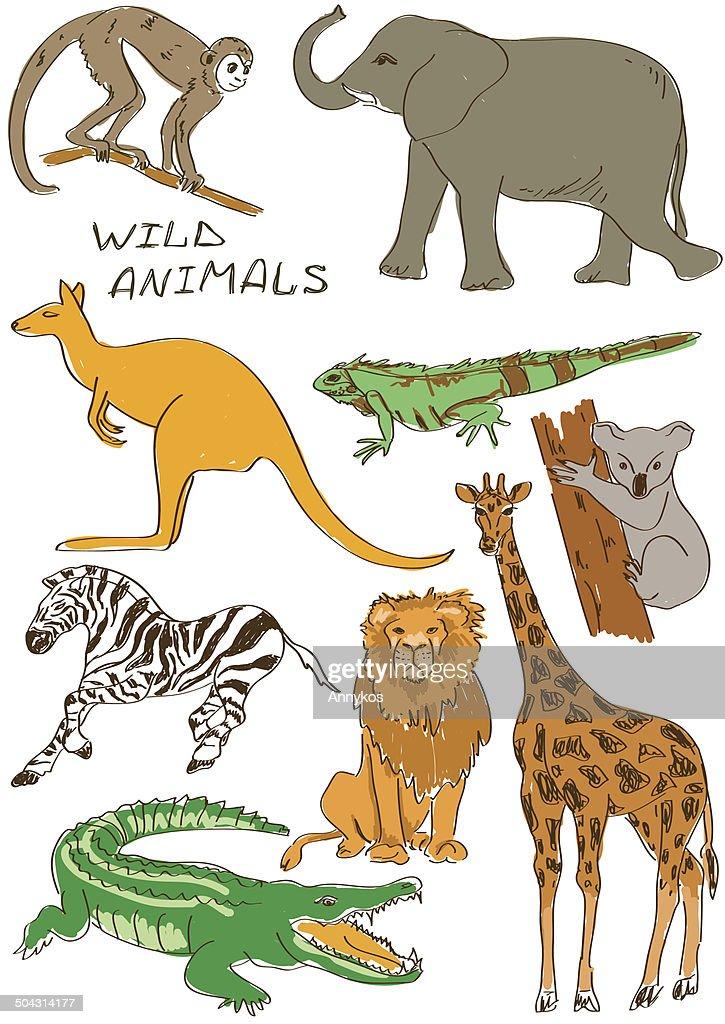 Set of isolated wild animals
