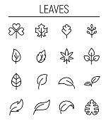 Set of leaf icons in modern thin line style.