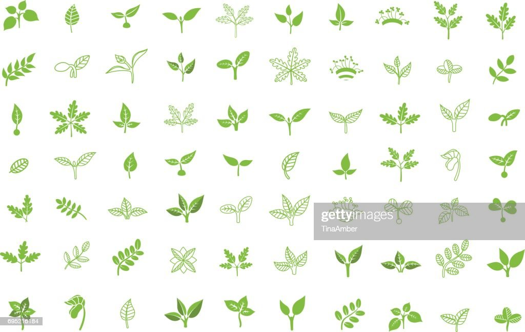Set of leaves design elements. Sprout new life vector icon